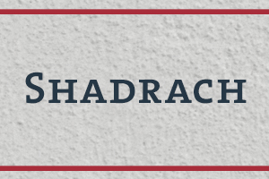The Naming Project: Shadrach