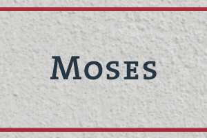 The Naming Project: Moses